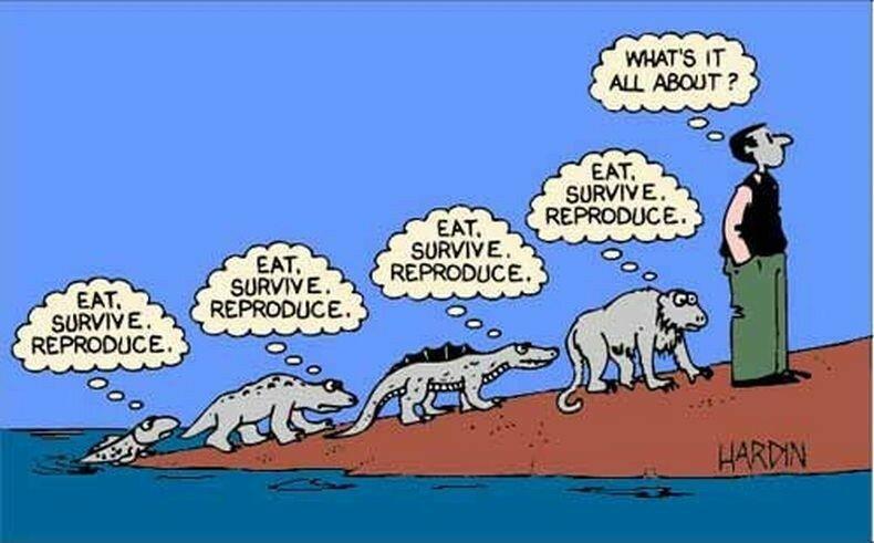 Карикатуры: 102 необычные гипотезы эволюции человека