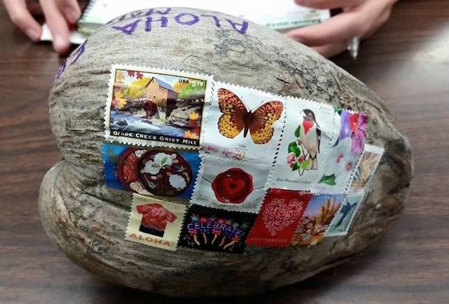 9. Кокос Вот такая необычная посылка прямиком с Гавайских островов.