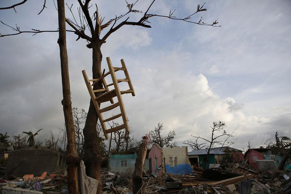 Категории шкалы ураганов Саффира — Симпсона.  Минимальный — повреждены деревья и кустарники.