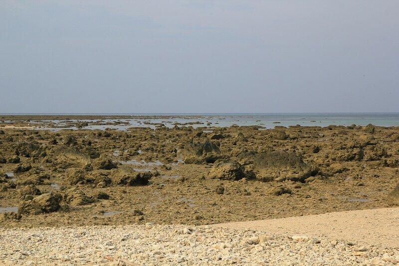 Обнажившееся во время отлива каменное дно с обломками кораллов у Кораллового мыса, Khao Lak, провинция Phang-Nga, Таиланд