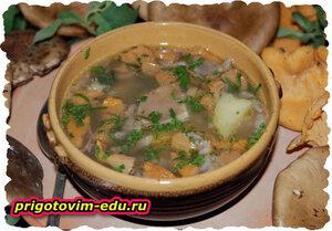 Грибной суп «Дилижан» с рисом