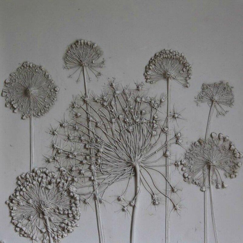 Гипсовая флора