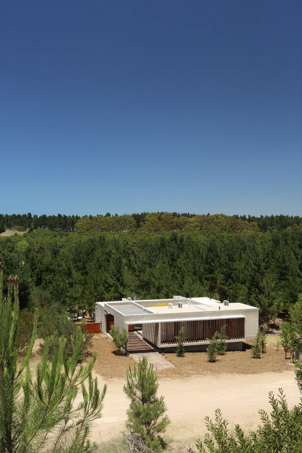 Дом в аргентинском лесу