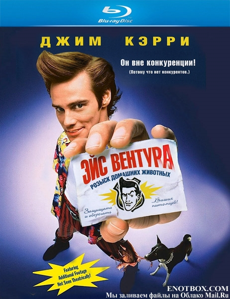 Эйс Вентура: Розыск домашних животных / Ace Ventura: Pet Detective (1994/BDRip/HDRip)