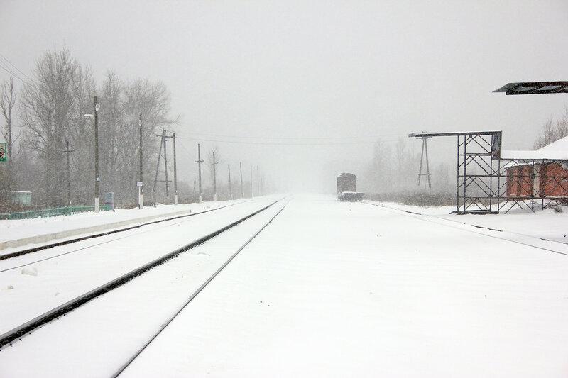 Станция Новодугинская, вид на Ржев
