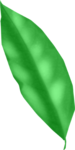 LH_Curious_Leaves_003.png