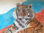 "Щурова Надежда (рук. Горшкова Елена Павловна) - ""Амурский тигр"""