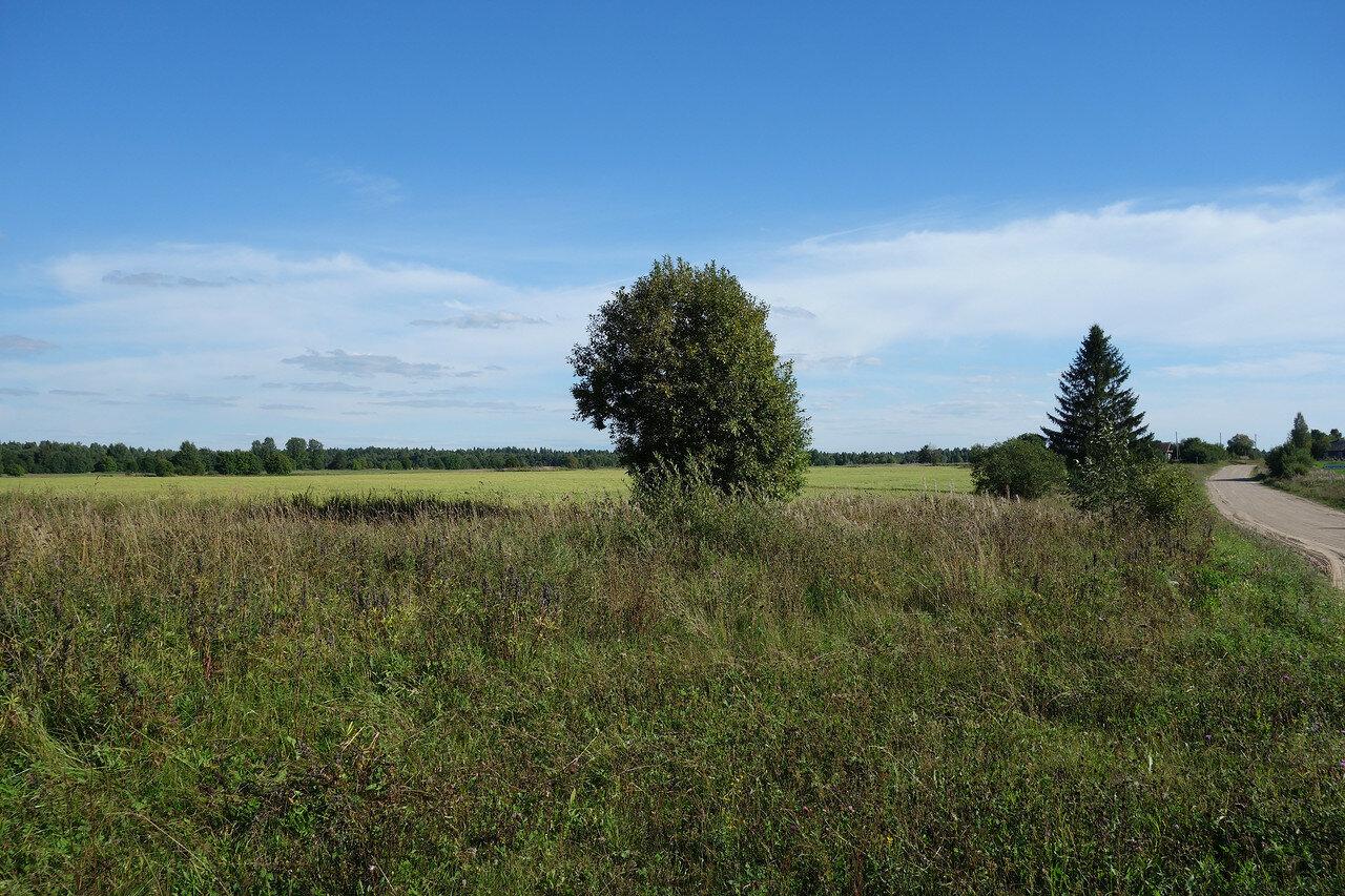 сельский северный пейзаж
