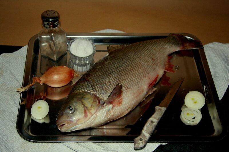 Натюрморт с рыбой