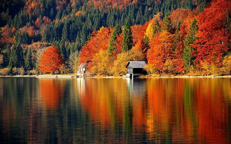 Фото стол осень