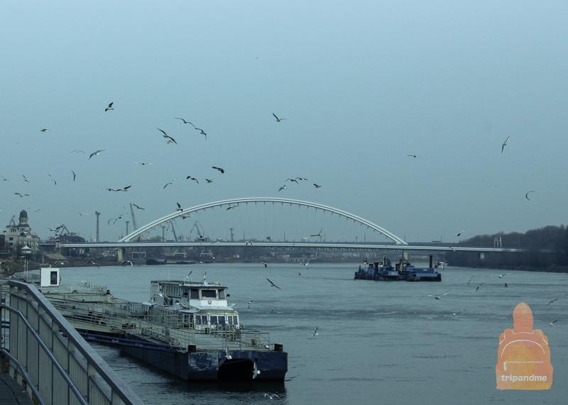 Мост Аполло в Братиславе
