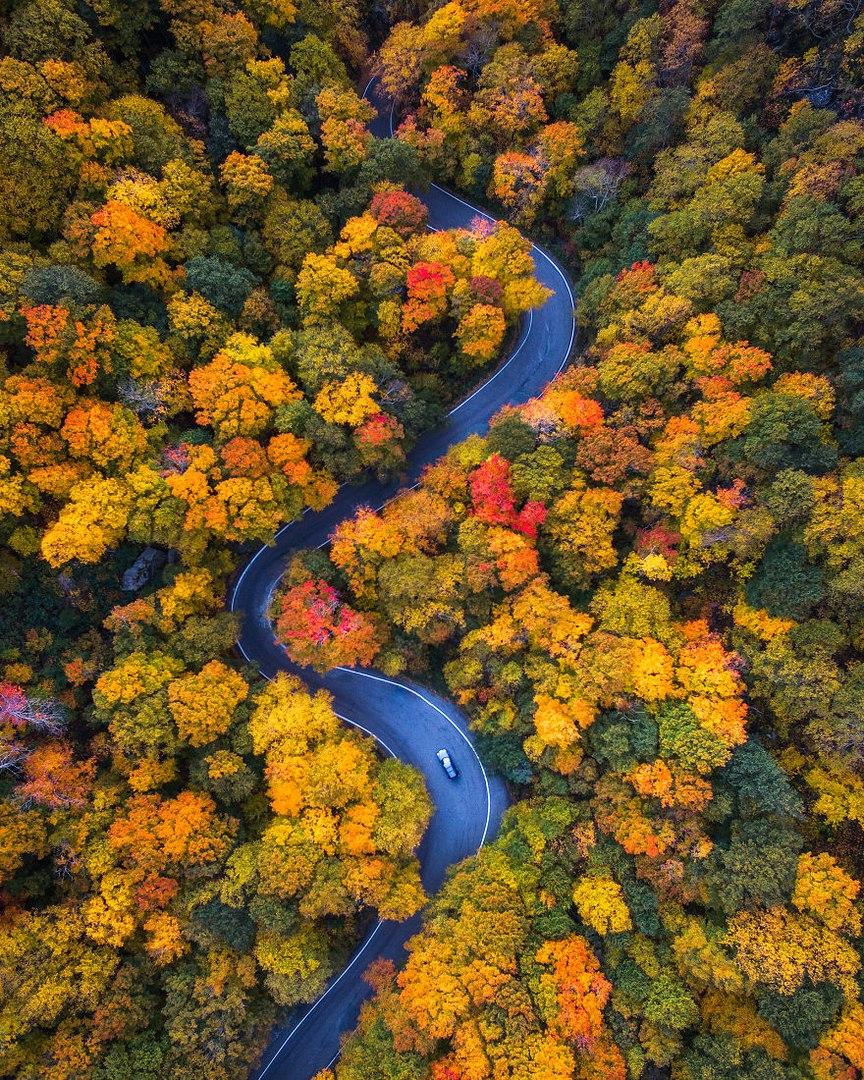 Michael Matti проехал всю Северную Америку чтобы запечатлеть красоту осени в разных штатах.