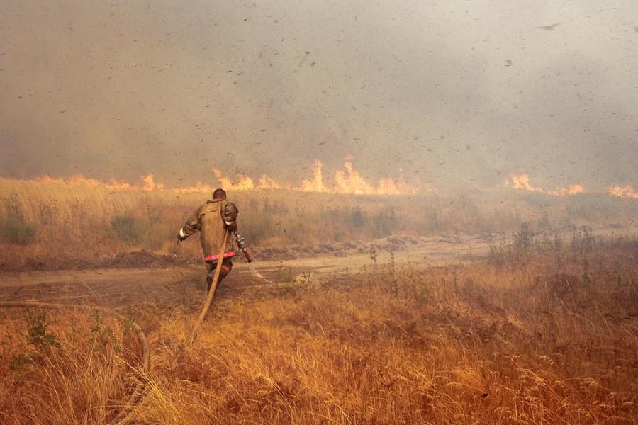 Природные пожары в России в 2010 году:
