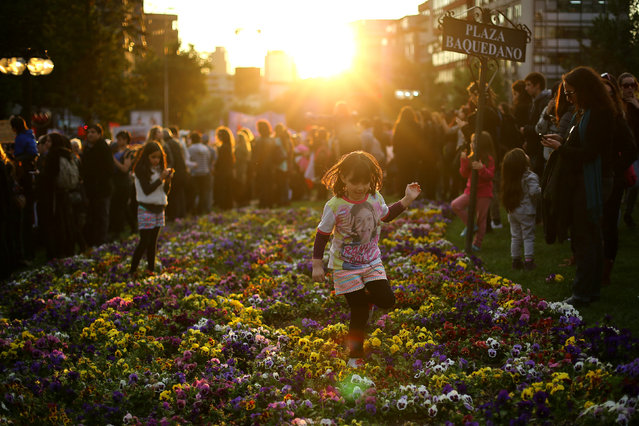 A child plays in a garden during a peaceful march against gender violence in Santiago, Chile, Octobe