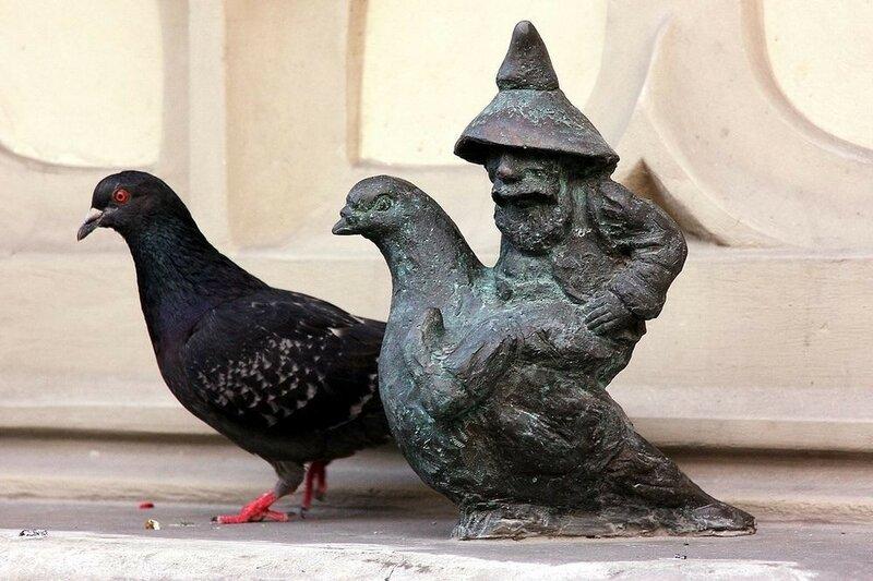 wroclaw-dwarves-92.jpg