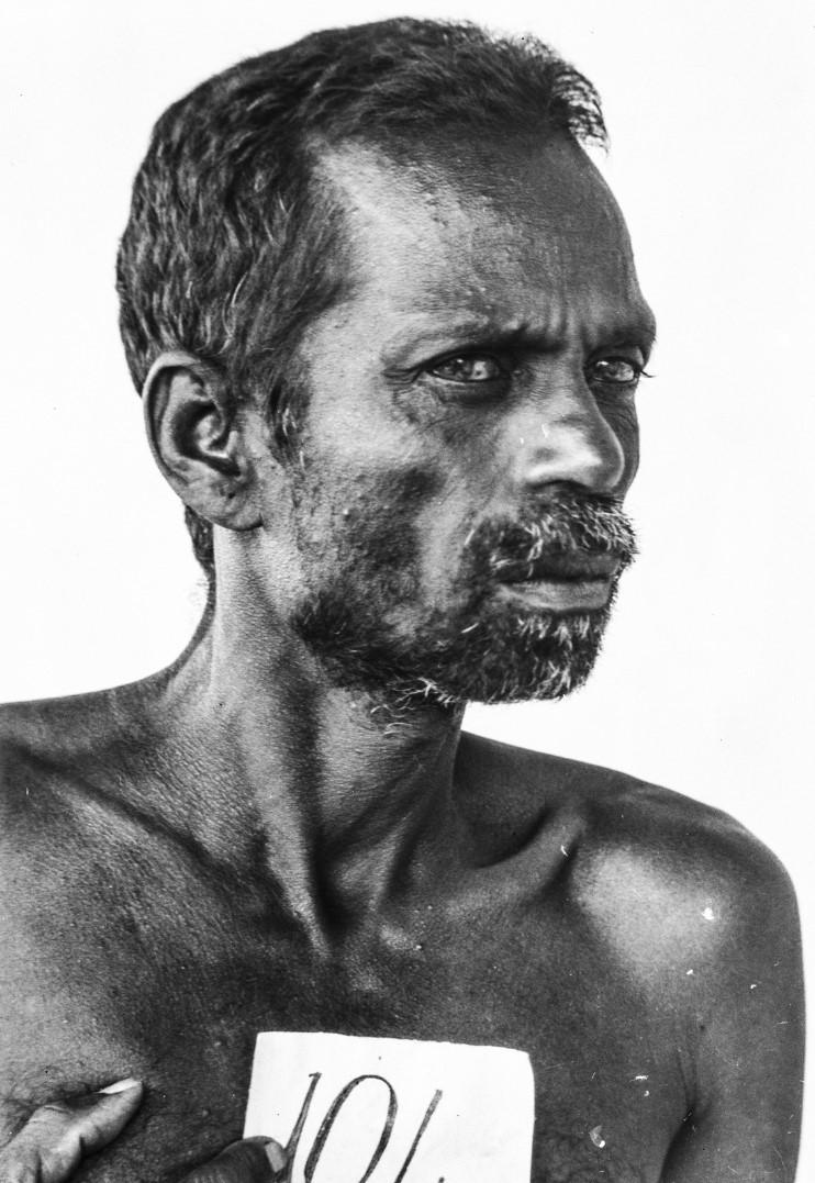 526. Горный сингалец