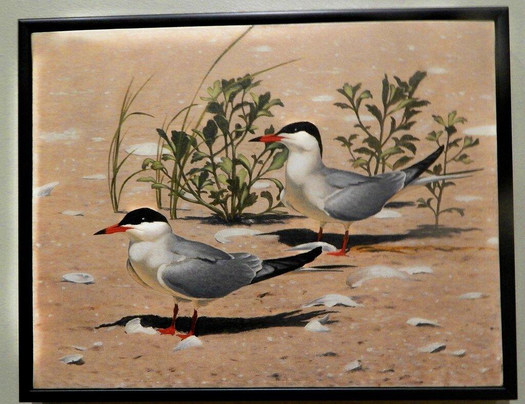 Птицы в искусстве.