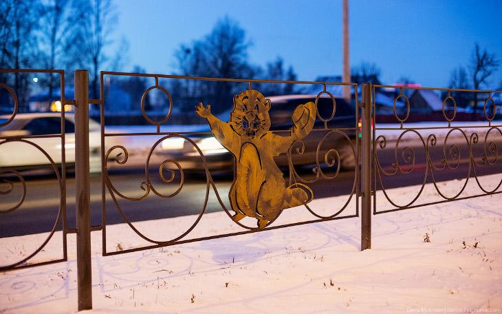 Фотографии и текст Дениса Мукимова   1. Бобры в Бобруйске на каждом заборе.