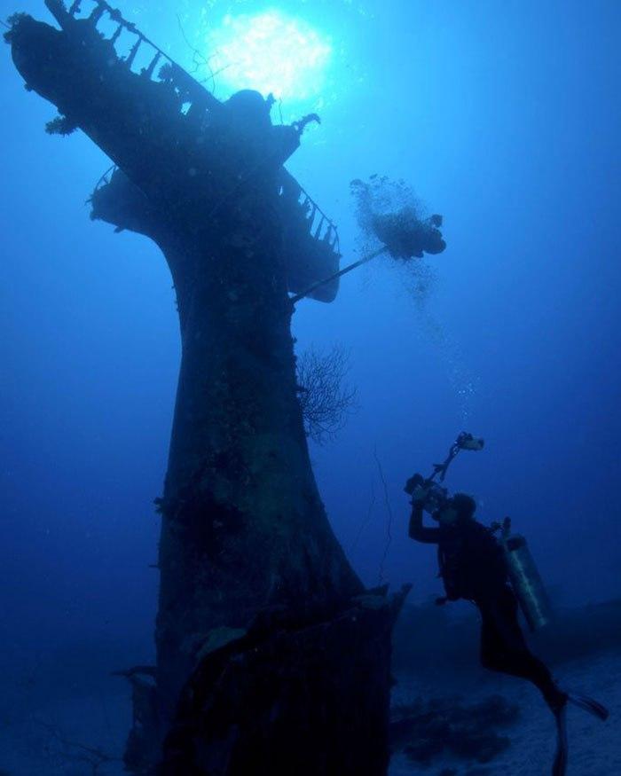 Такую удивительную находку сделала американский фотограф Брэнди Мюллер (Brandi Mueller) у побережья