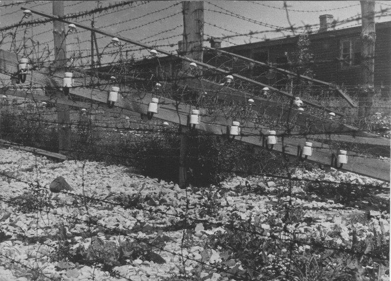 Забор из колючей проволоки, ограждающий концлагерь Освенцим