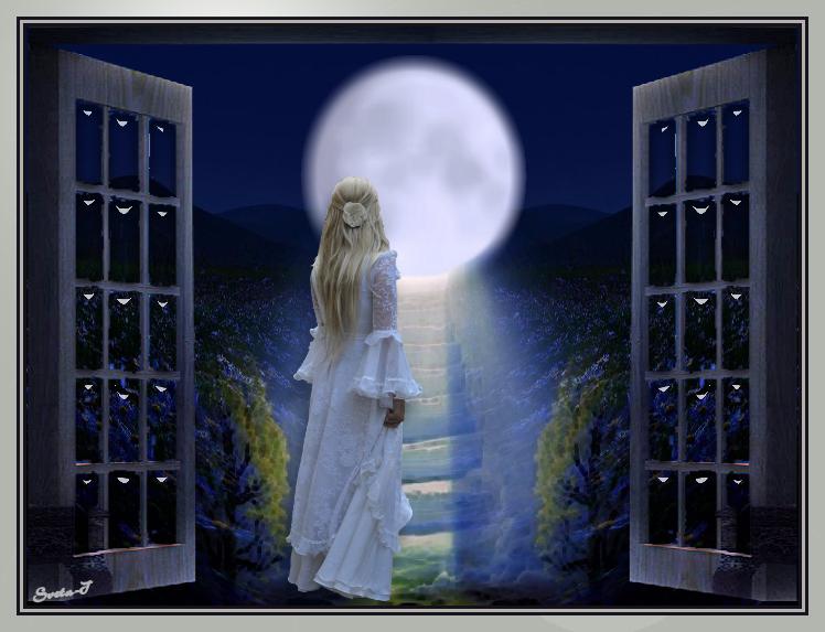 Магия луны.png