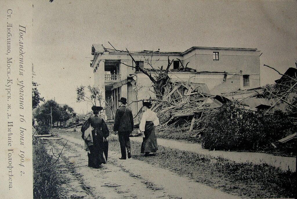 52400 имение Глофтеева, последствия урагана 1904 года.jpg
