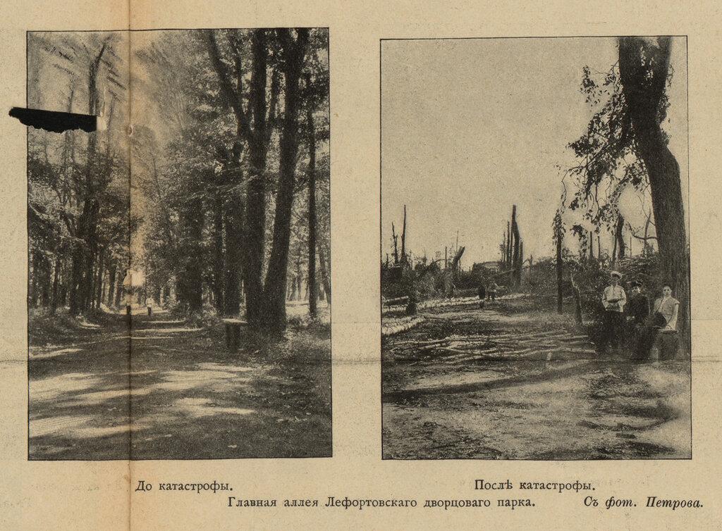 111209 Лефортовский дворцовый парк до и после урагана Петров.jpg