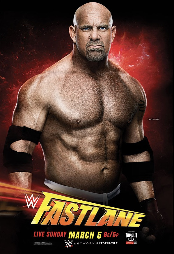 Post image of WWE Fastlane 2017