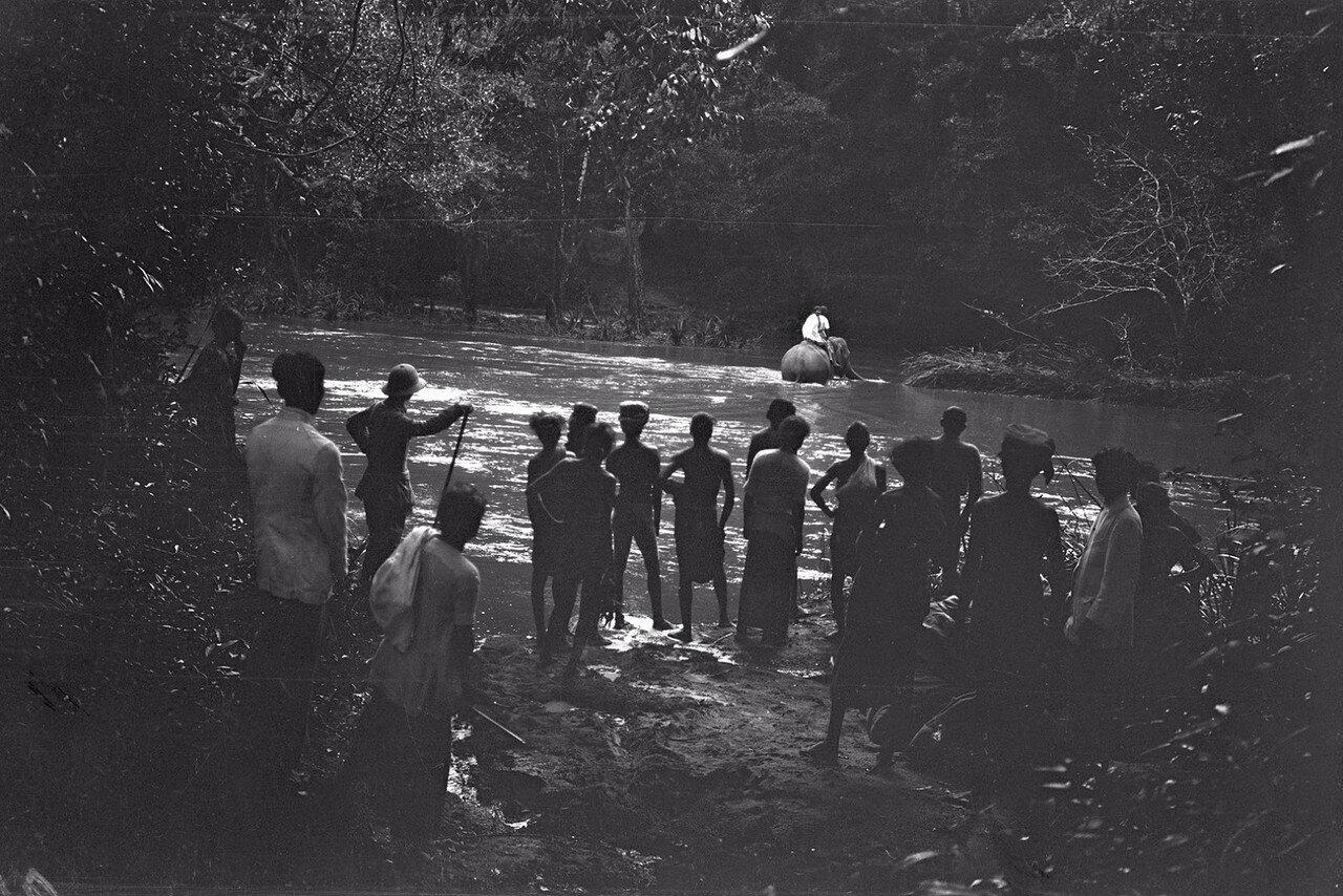 97. Пересечение реки  Гал-Оя  на слонах