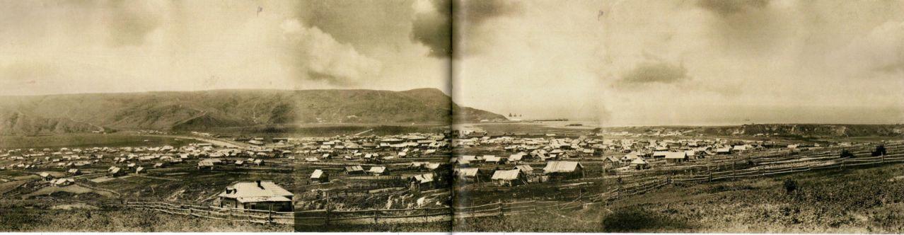 Панорама Александровска