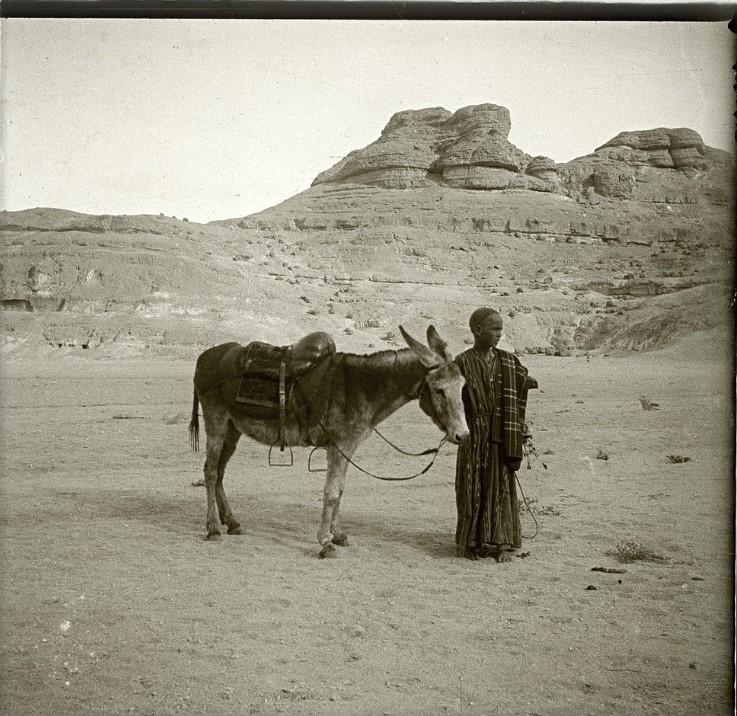 1910. В окрестностях Бени-Гассана. Мальчик с ослом. Египет