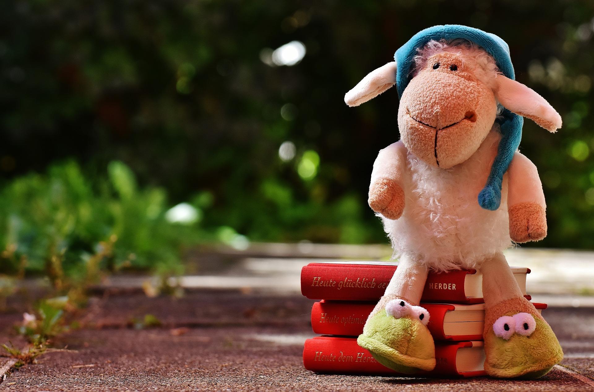 sheep-1592614_1920.jpg