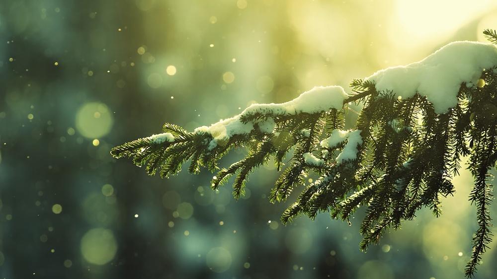 © umavoltinha   Которое обязательно случится. Этой зимой...