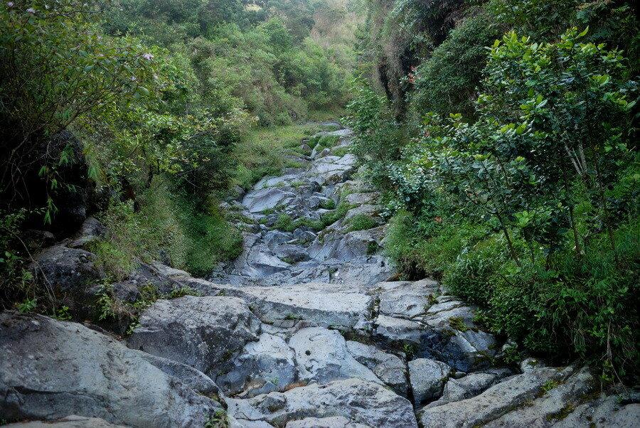 Сухое русло реки