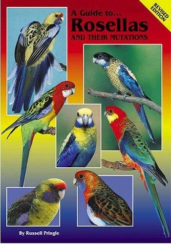 Книги по ветеринарии птиц (PDF) на английском языке - Страница 7 ...