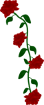 SSS_Roses_Element-4.png