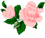 SSS_Roses_Element-9.png