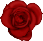 SSS_Roses_Element-28.png