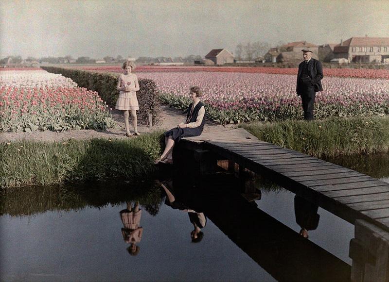 Лесорубы хвастаются срезанной гигантской секвойей «Марк Твен», Калифорния, 1892 год