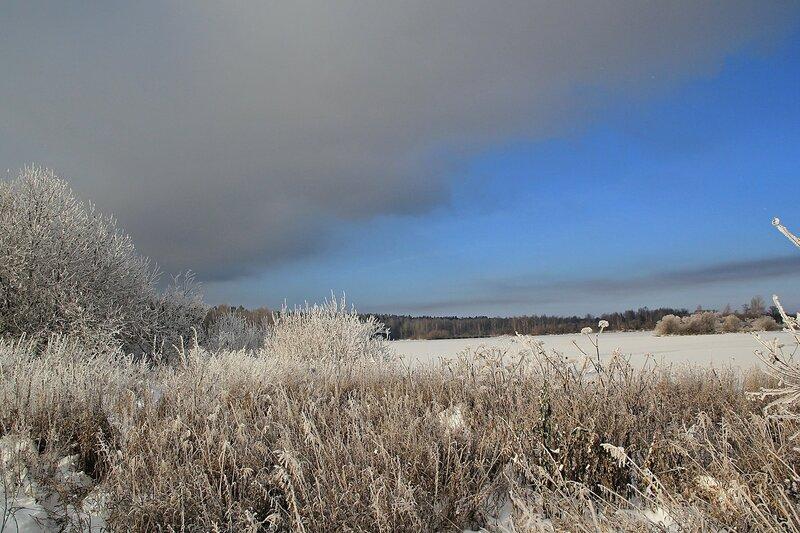 Зимний пейзаж озера Жуково (Кирово-Чепецк): прибрежные заросли, покрытые толстым слоем инея