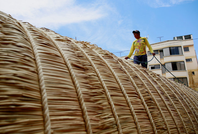 "A Bolivian builder walks on top of the ""Viracocha III"", a boat made only from the totora reed, as it"