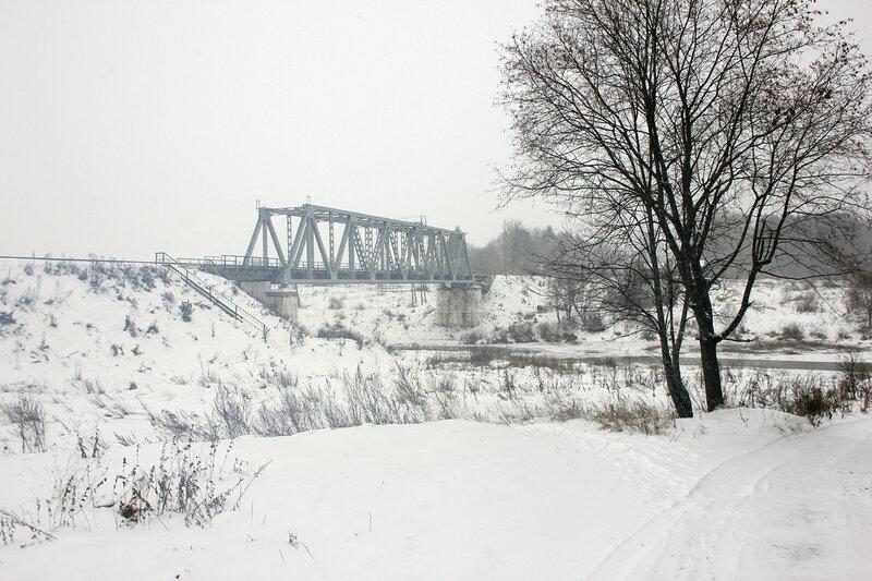 Мост через реку Вазуза на перегоне Сычёвка - Новодугинская и дерево