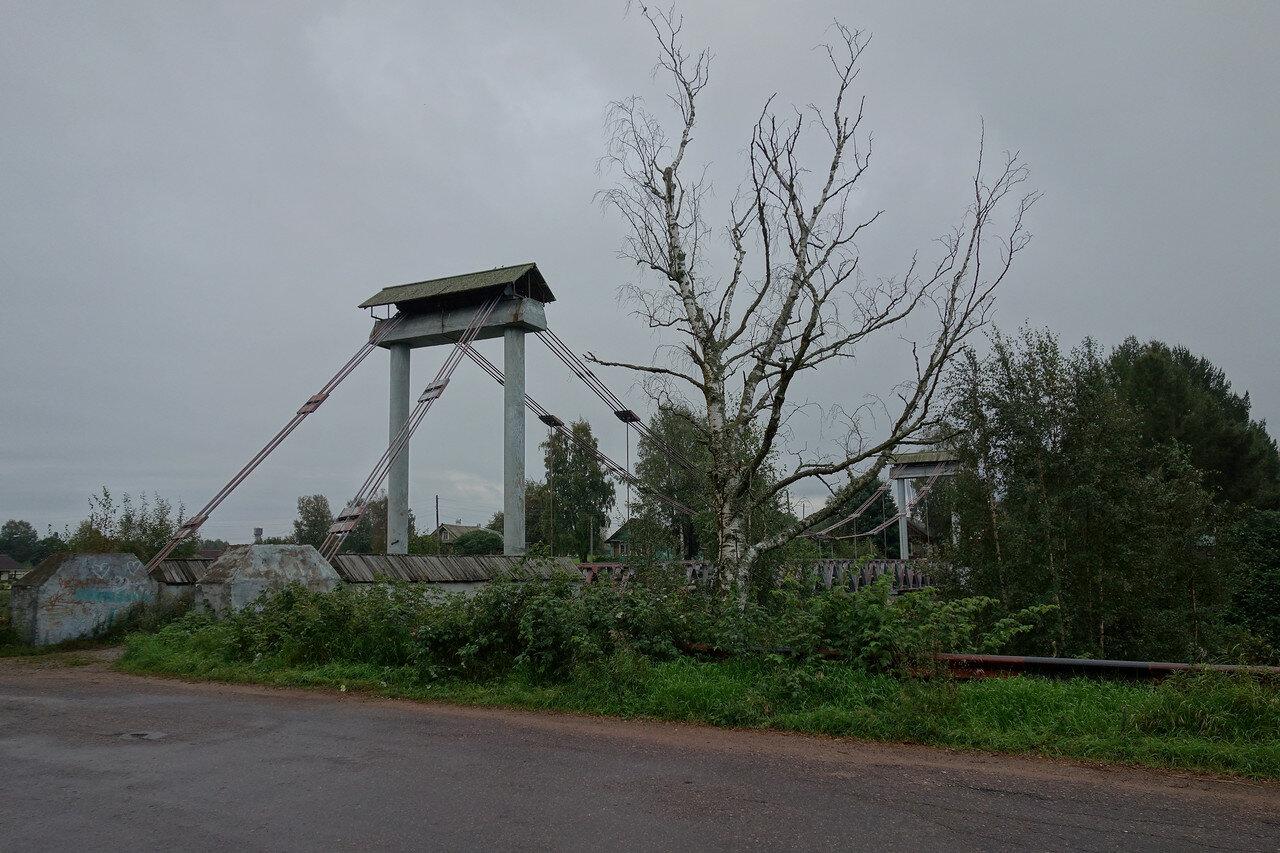 село Видлица, мост и сухая береза