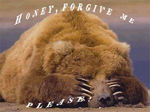 Прости! Медведь закрыл глаза лапами открытки фото рисунки картинки поздравления