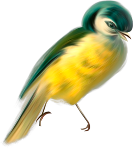 птички желтые