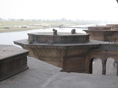 Ямуна и храм на берегу