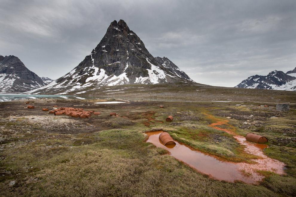 13. Помогите! Лисы. (Фото Henrik Nilsson | 2016 National Geographic Nature Photographer of the
