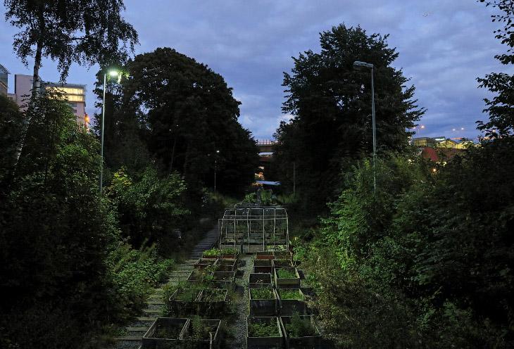 2. Тот самый основатель садового общества Tragard ра Sparet (Сад на железной дороге) в Стокгольме, Ш