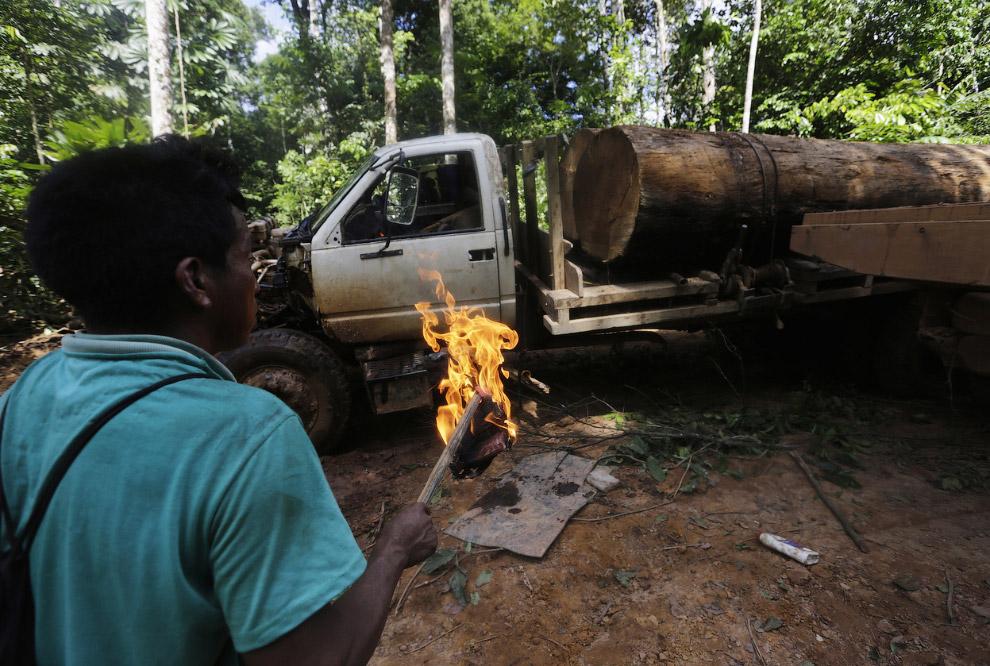12. Автомобили можно было и не сжигать, а себе оставить, возможно, это работа воинов джунглей А