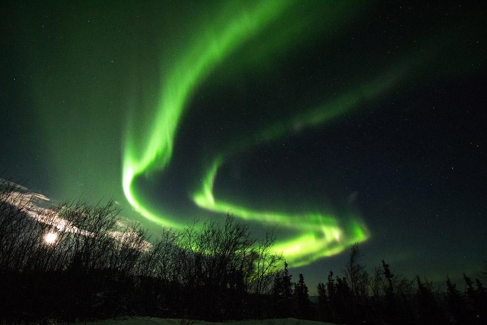 21. А это уже наши дни. Луна над Анкориджем, штат Аляска, 3 февраля 2015. (Фото Dan Joling):